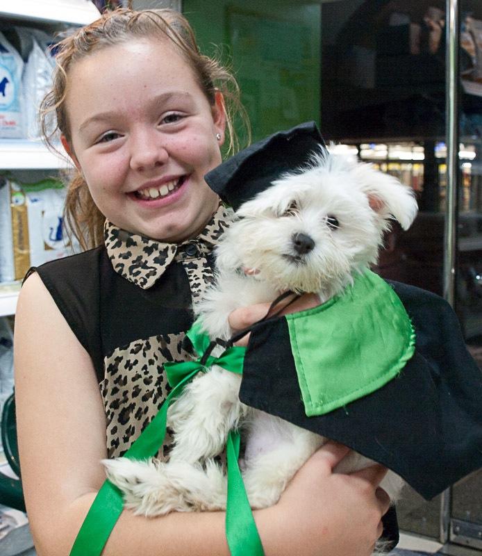 puppy preschool graduate