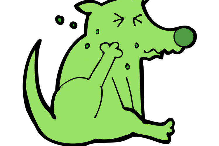 A green cartoon dog scratching with a caption- scratching again?