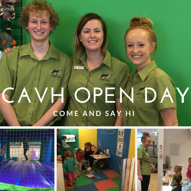 CAVH open day